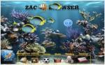 Zacbroser est un logiciel tout a fait approprié pour les jeunes enfants autistes qui peuvent